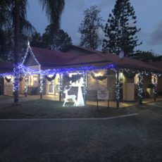 2019 CHRISTMAS BUSINESS LIGHTS COMPETITION…AND THE WINNER WAS!!